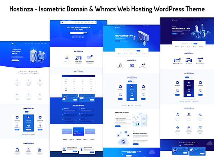 hosting elementor wordpress theme
