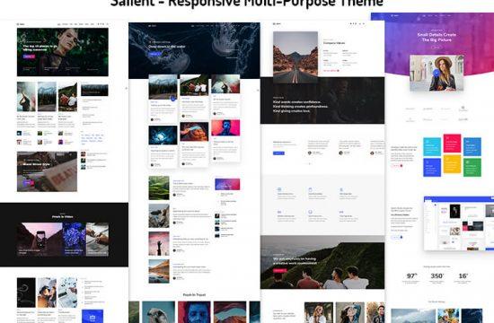 Responsive Multi-Purpose Theme