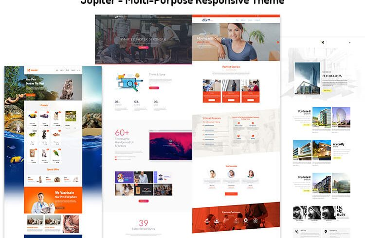 Multi-Purpose Responsive Theme